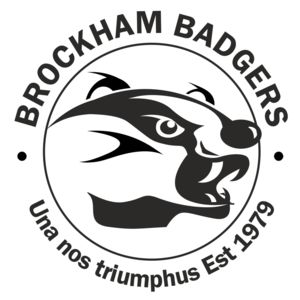 Brockham Badgers - Domed  Thumbnail