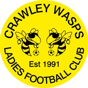 Crawley Wasps LFC - Domed  Thumbnail