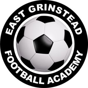 East Grinstead FA - Domed  Thumbnail