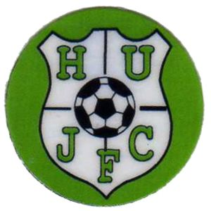 Hailsham United JFC - Domed  Thumbnail
