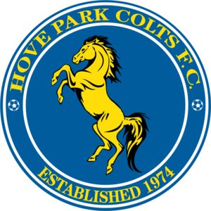 Hove Park Colts FC - Domed  Thumbnail
