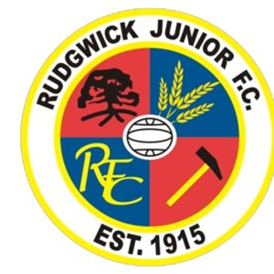 Rudgwick Junior FC - Domed  Thumbnail